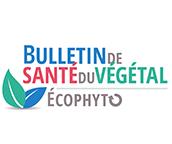Logo du bulettin de Veille Sanitaire